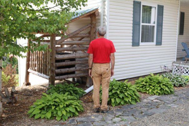 wasps,jim,outdoors
