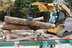 Moving poplar logs with the skidsteer