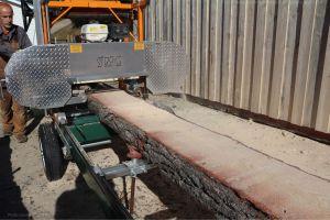 Saw milling pine logs