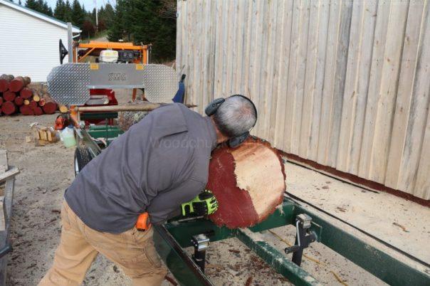 sawmill,pine,logs