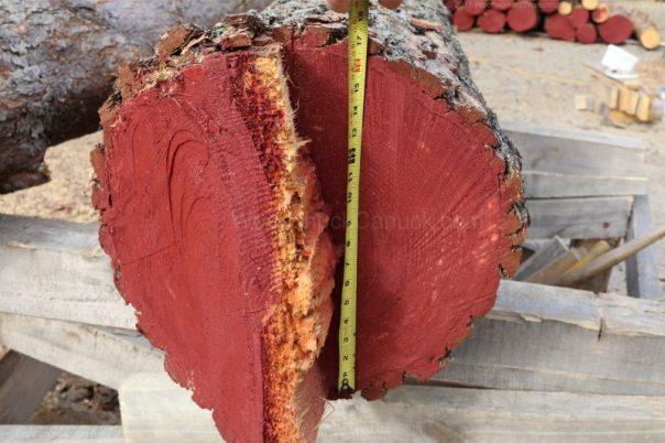 sawmill,logs,pine