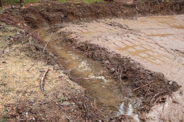 skidsteer,land clearing,mud