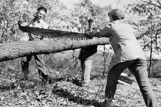 women sawyers,WLA,women's lumber army