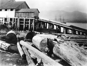 vintage photos,old pictures,lumber industry,ships,big logs,sawmilling