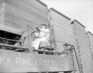 vintage logging photos, olf forestry photographs, women, stacks of lumber, lumber industry