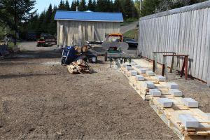 sawmill,lumber,spruce logs