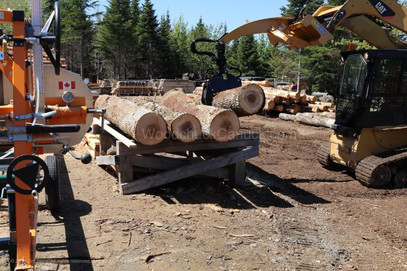 chainsaw,ash wood,skidsteer,firewood