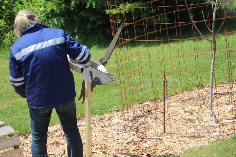 eagle whirligigs,whirlygigs,birds of prey,woodcrafts,Made in Nova Scotia