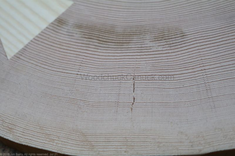 woodworking,close up of end grain hemlock logs,Nova Scotia,Antigonish