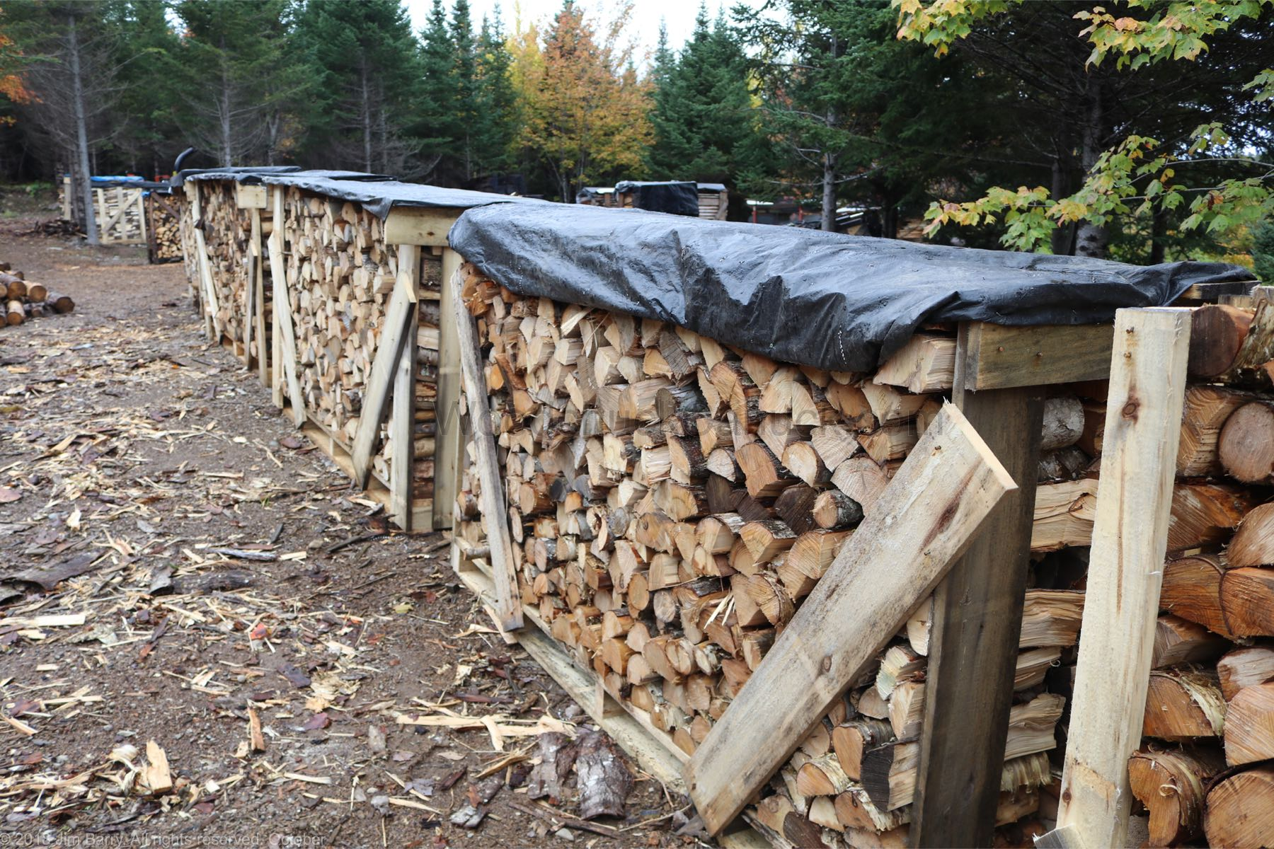 Crates of firewood for sale.