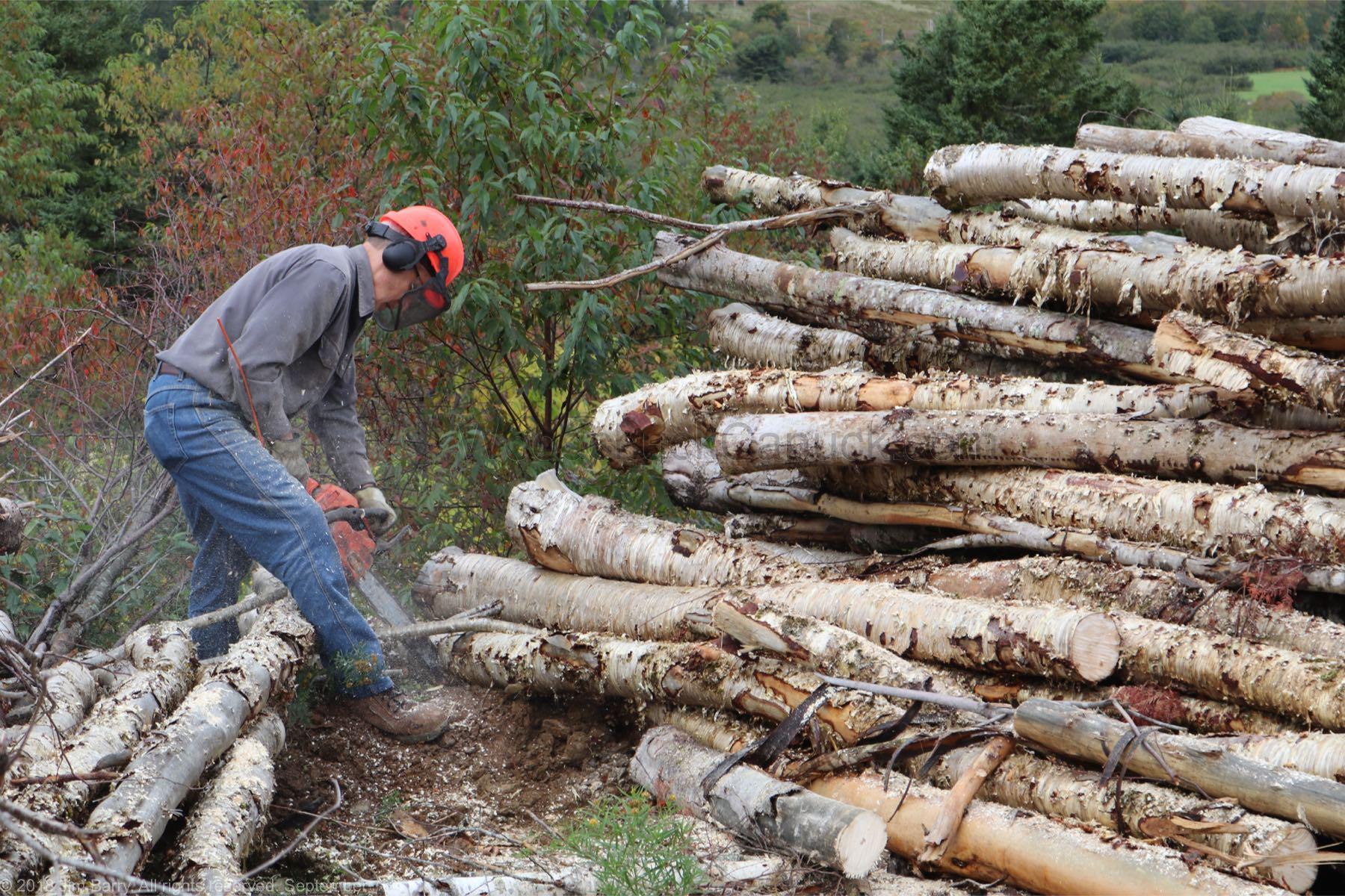 20180929-firewood-9-jim