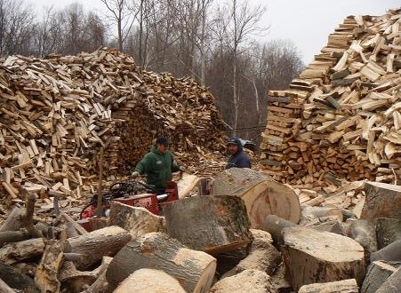 Firewood around the world.