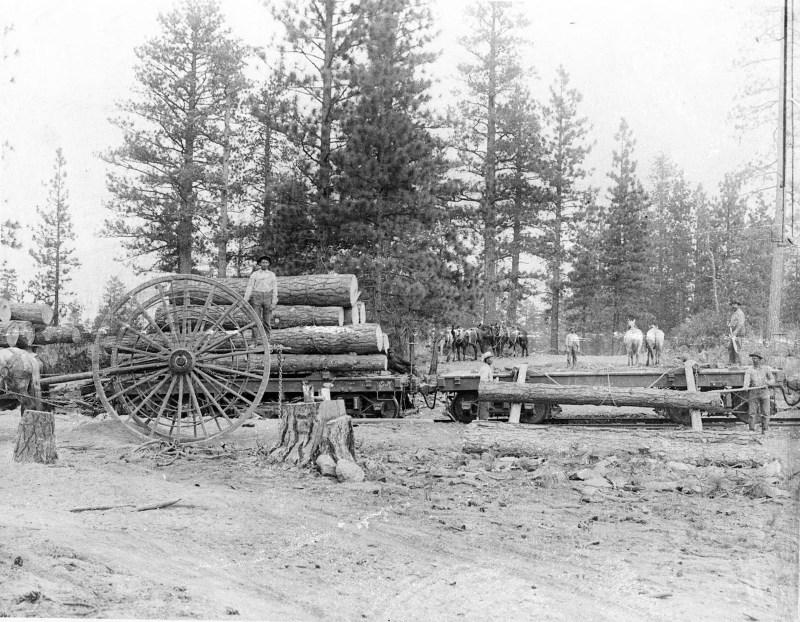 1905 Siskiyou County Logging Railroads.