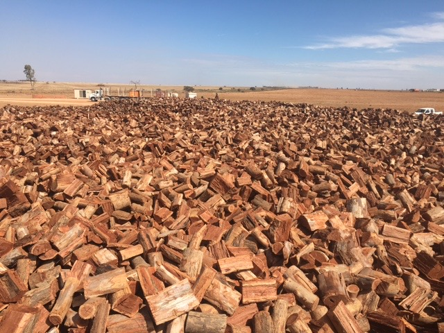 Firewood as far as the eye can see.