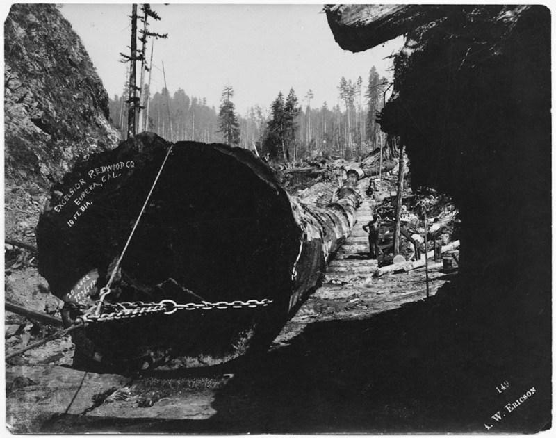 1900s Excelsior Redwood Co.