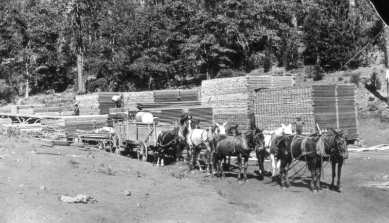 1898 Lumber transportation at Cohasset Mill.