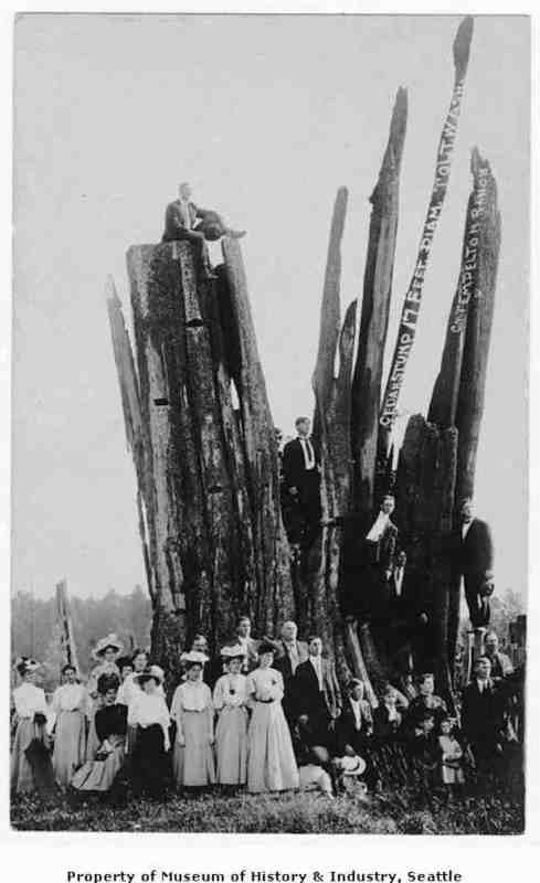 1905 Group standing by a huge cedar stump, Tolt, Washington