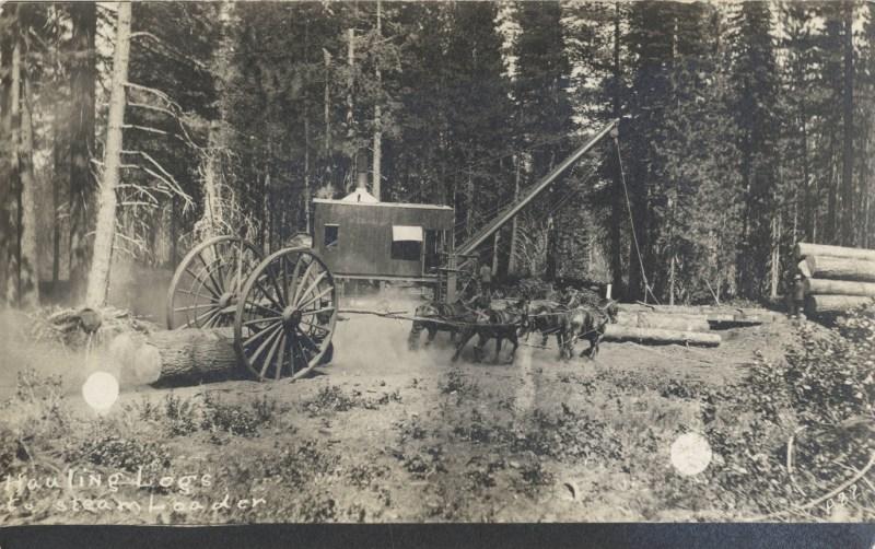 1910 McCloud River Lumber Company.