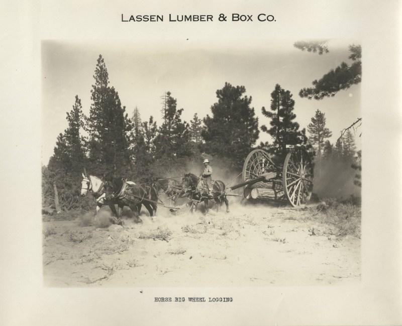 1923 Horse Drawn Logging Wagon.