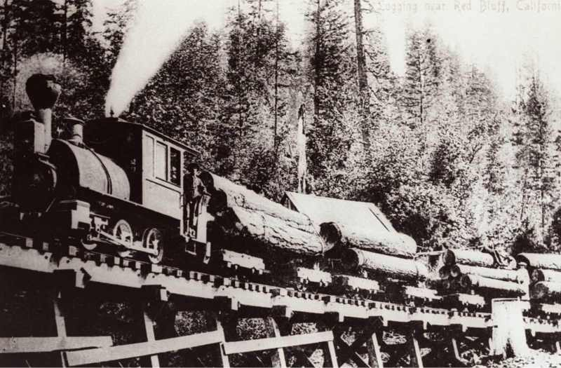 1900 Logging Train on Trestle