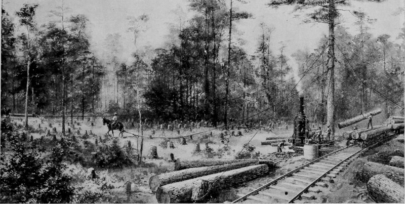 1908 Illustration of clearing trees with horse and rail.