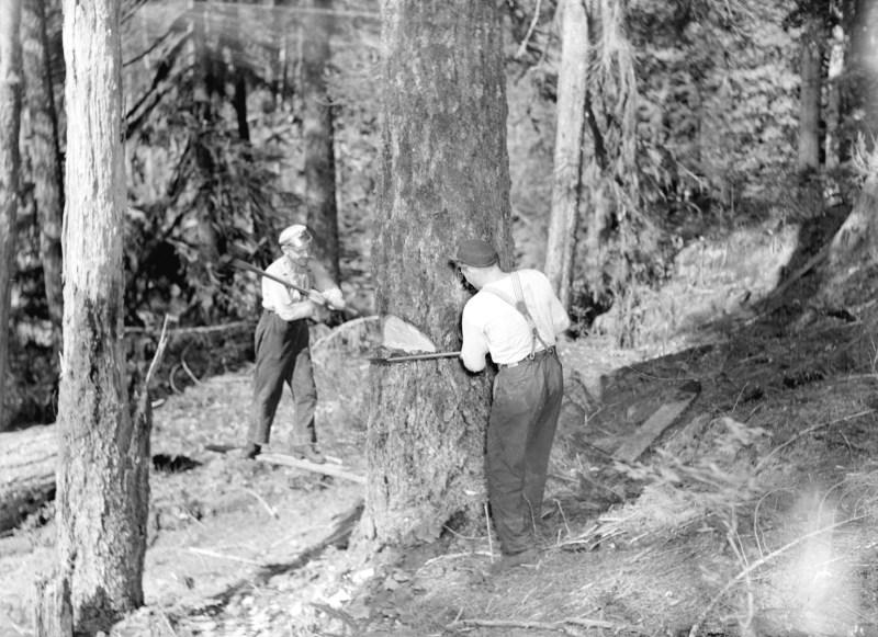 1940 Lumbering at Youbou.
