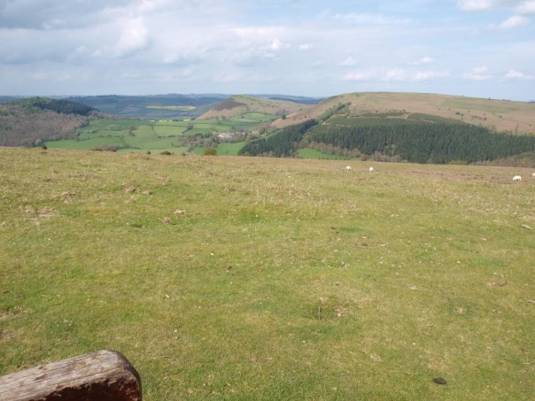 On Hergest Ridge