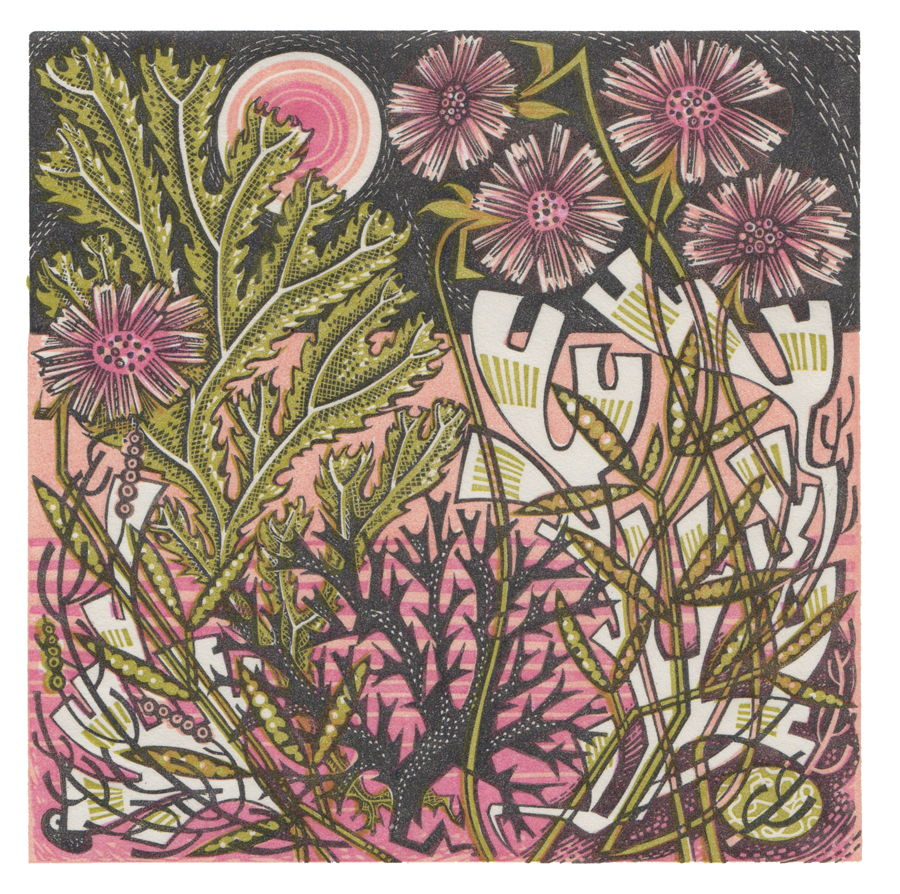 """""""A Printmaker's Journey,"""" curated by Angie Lewin"""