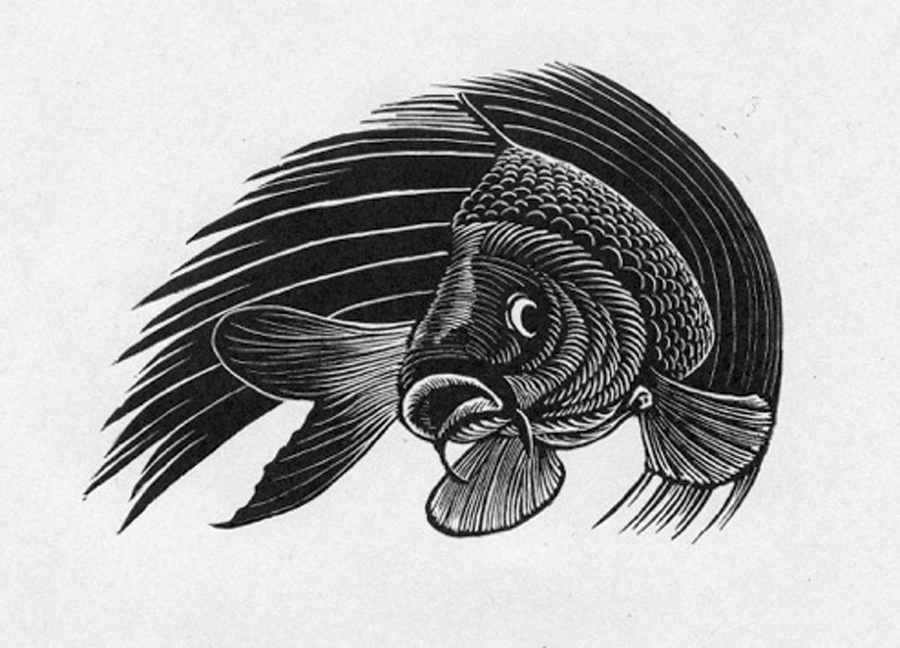 """More fish for """"Seize the Carp"""" Hamilton Wood Type Museum Project!"""