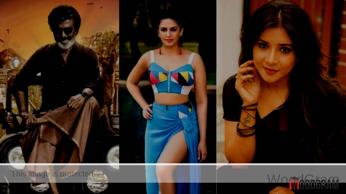Sakshi Agarwal In Kaala Movie