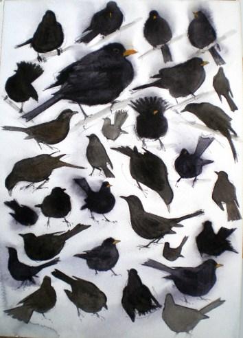 Thirty Two Blackbirds, Vestermarie