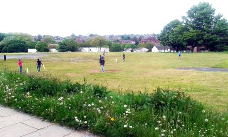 Monument Moor Cricket
