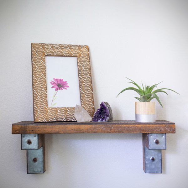 silver round air plant display