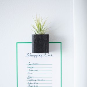 Black Air Plant Magnet