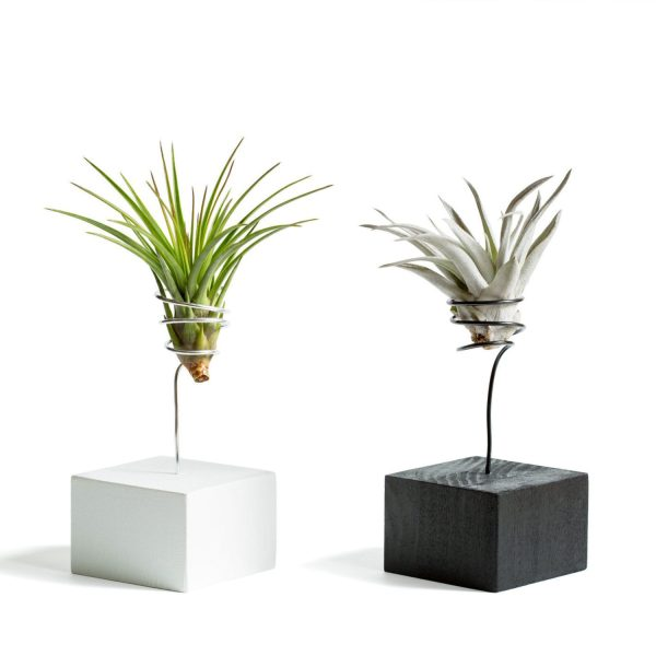 Black and White Wire Vases