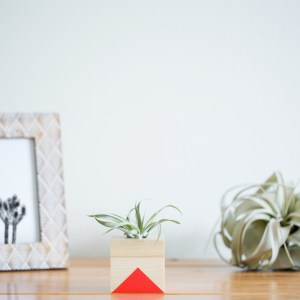 Triangle Air Planter