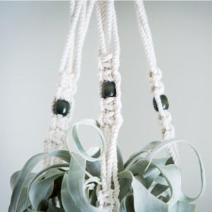 Hanging Macramé Air Plant Holder