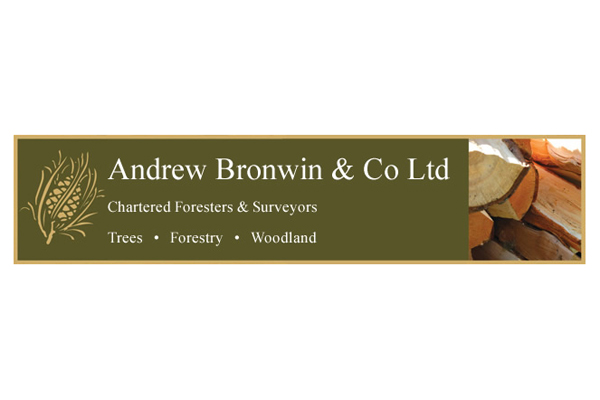 Andrew Bronwin and Co