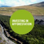 Investing in Afforestation—Economic aspects of woodland creation for timber production | Brieifing Papers