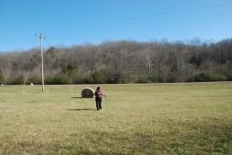 39crossing_the_field