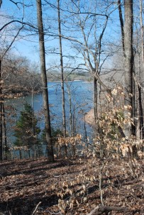 06lakeview_from_trail