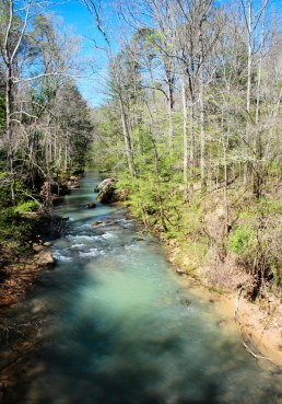 Borden Creek