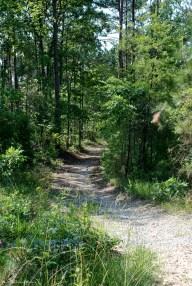 Trail beyond gravel pile