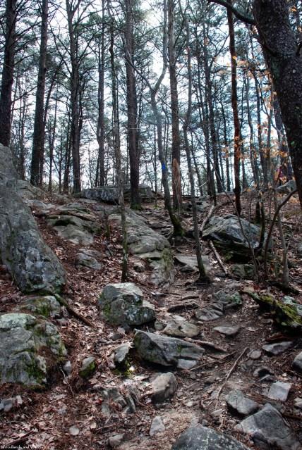 27rocky_ascent