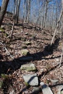 07steps_to_creek