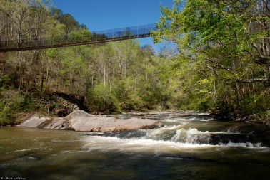 snake_creek_swingingbridge2