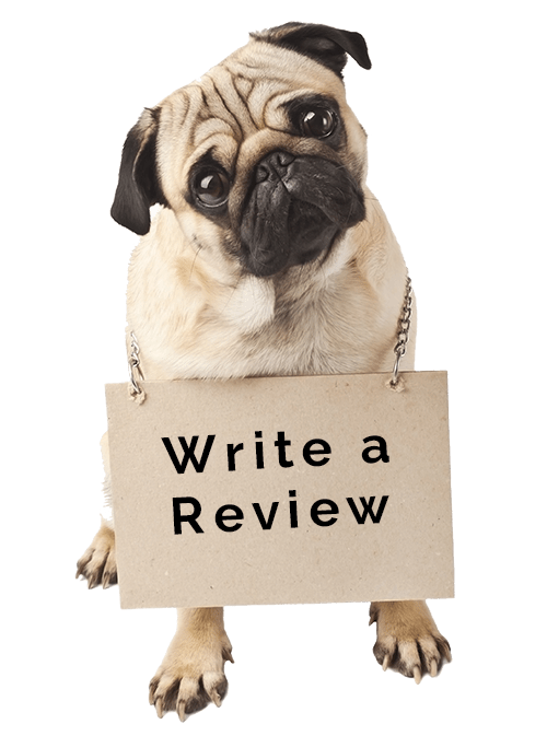 review dog daycare in houston