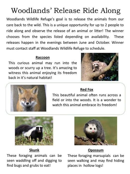 Woodlands Release Ride Along