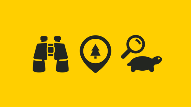 Learn more about nature! This image contains three black icons on a yellow background. The first is binoculars, then a tree, and finally a turtle.