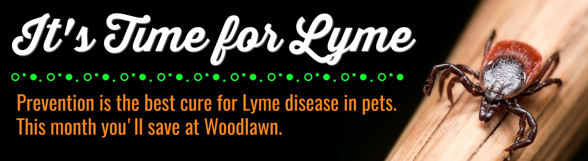 Time to save on Lyme disease prevention at Woodlawn